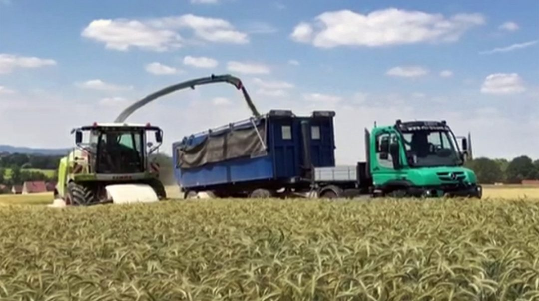 Vorführmaschine Unimog U 430 Agrar beim Häckseln von Schnittroggen